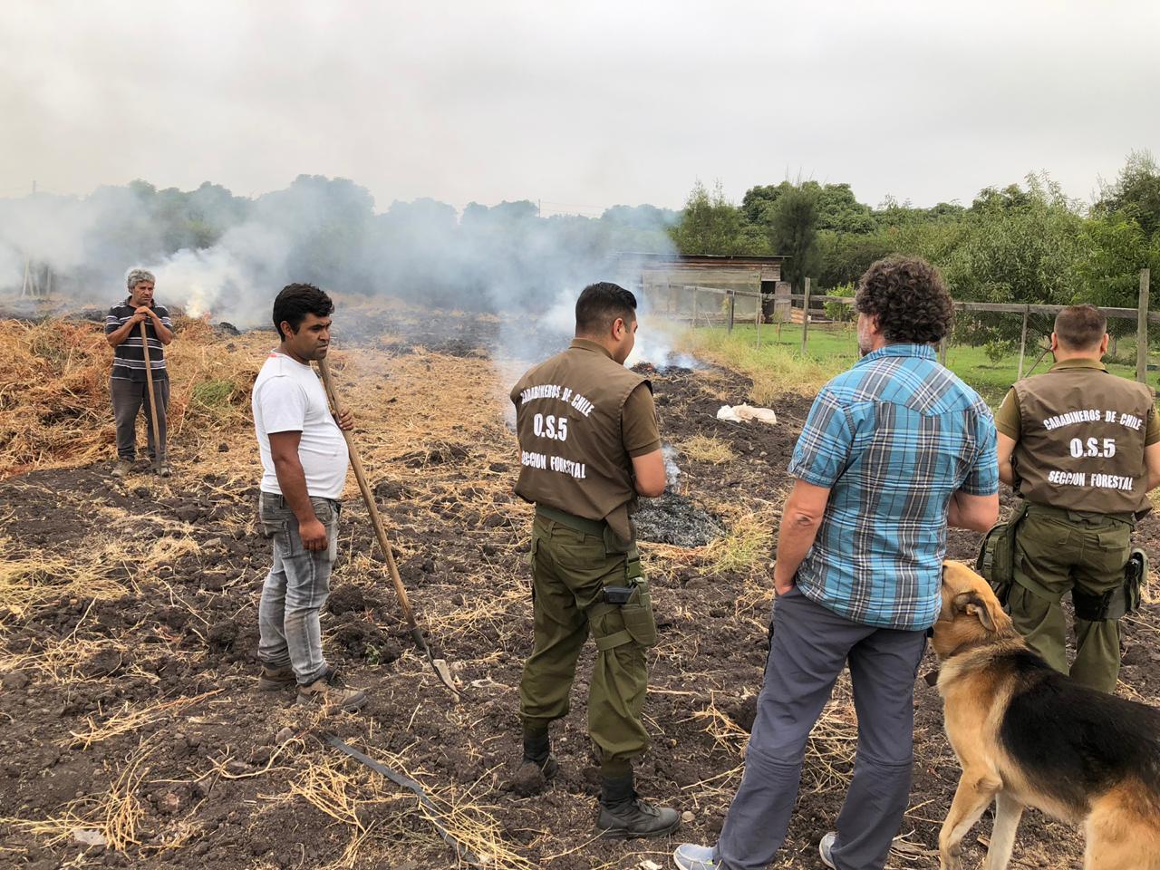 CONAF extiende hasta el 30 de abril la prohibición de realizar quemas agrícolas en la región de Valparaíso