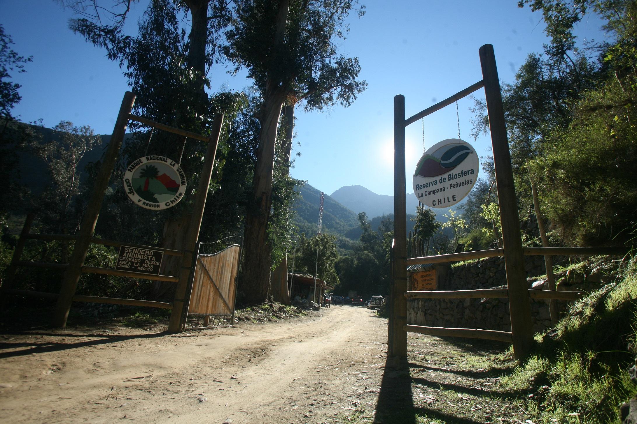 Día del Patrimonio: CONAF abrirá gratuitamente las áreas silvestres protegidas este fin de semana