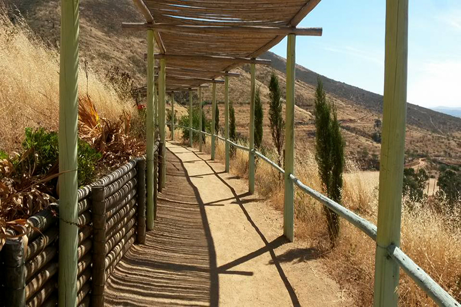 Cerca de 300 personas han ingresado de manera ilegal al Parque Urbano Natural La Ligua