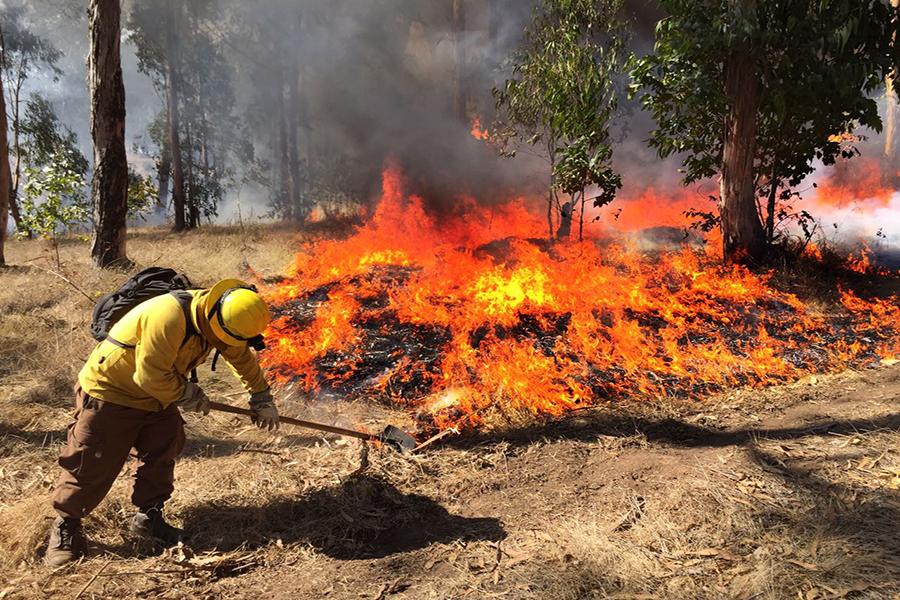 CONAF pide precaución con los asados para prevenir incendios forestales en la Región de Valparaíso