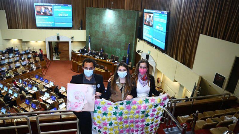 """Unánime apoyo para despachar la denominada """"Ley Dominga"""""""